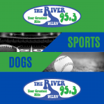 Sports Dogs Podcast